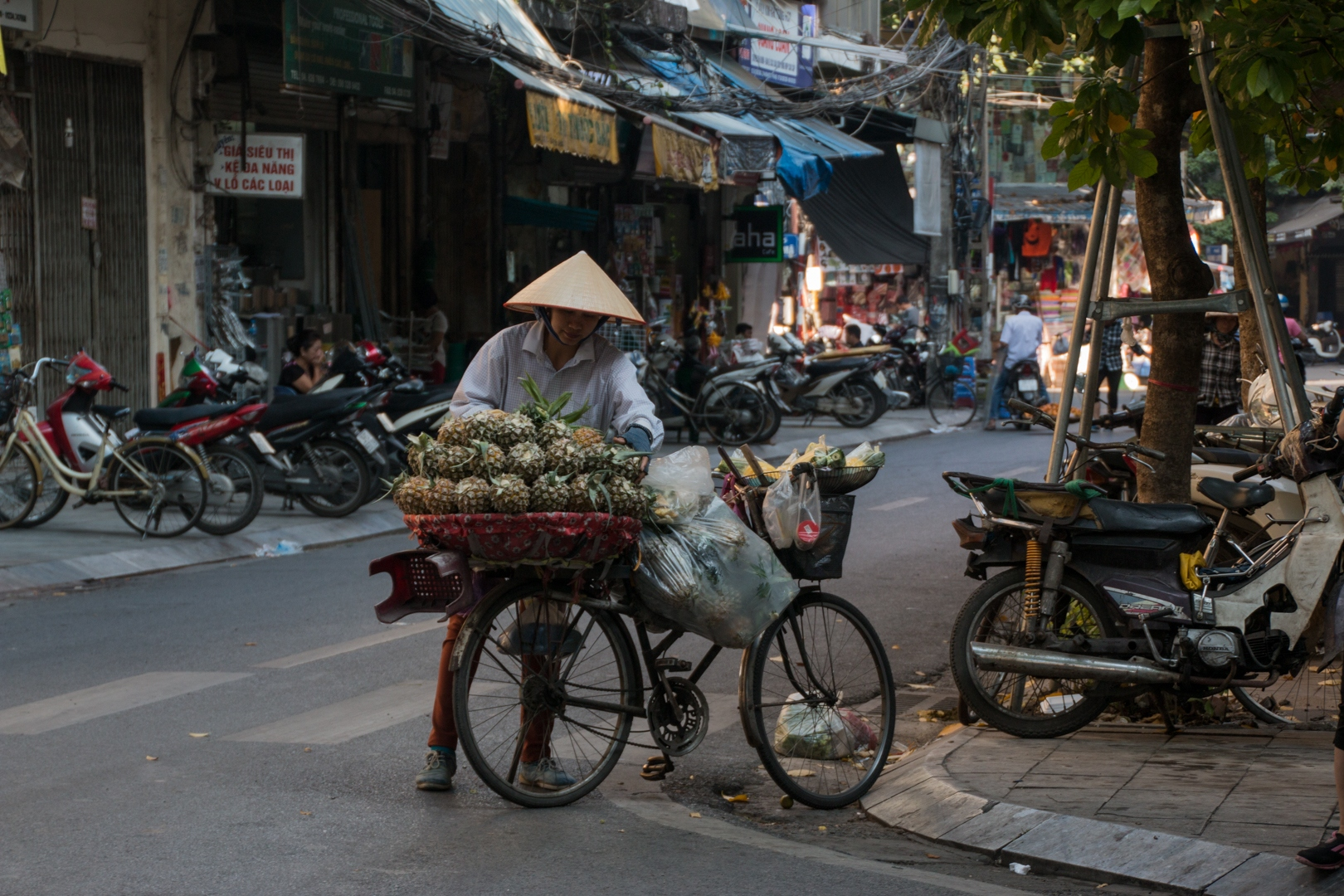 PS001-fruit-seller-in-Hanoi-Mariana-Visser-Copy