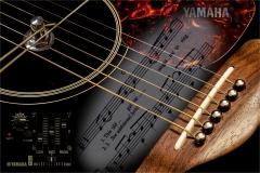 PO001-Guitar-medley-Rob-Minter