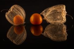 DO001-Gooseberries-Bennie-Vivier